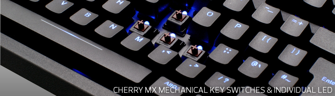 Max Keyboard Blackbird TKL Backlit Mechanical Keyboard